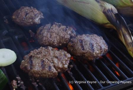 BBQ Burgers 2 2015