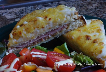 Croque Monsieur 9 2015