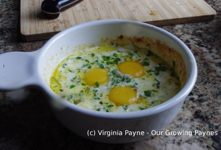 French baked eggs 4 2015