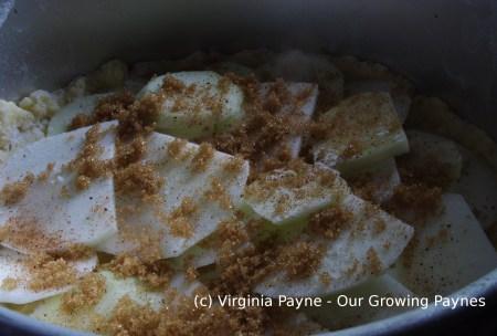 Irish apple cake 6 2015