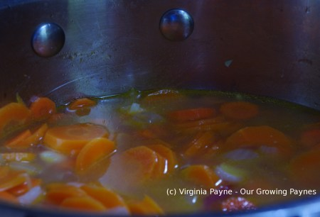 Curried carrot soup 2 2015