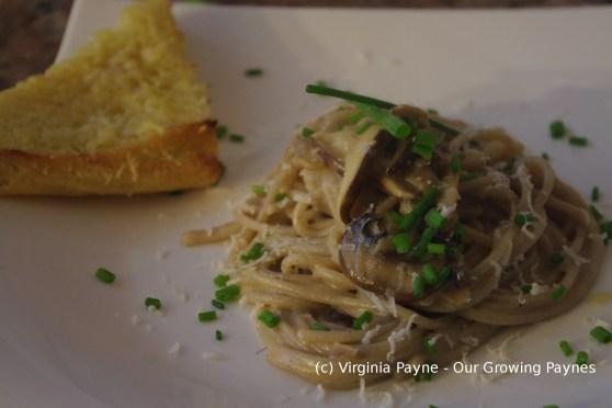 Mushroom pasta 6 2015
