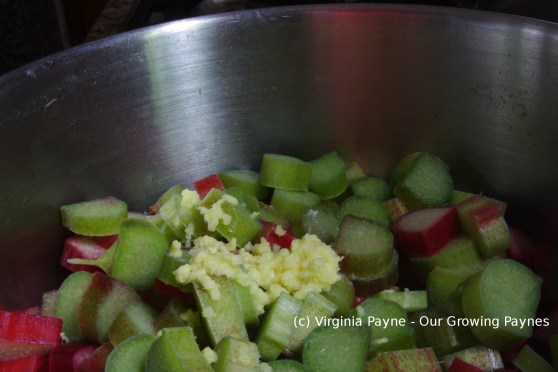 Rhubarb ginger jam 2 2016