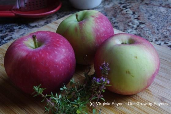 gooseberry-apple-pork-1-2016