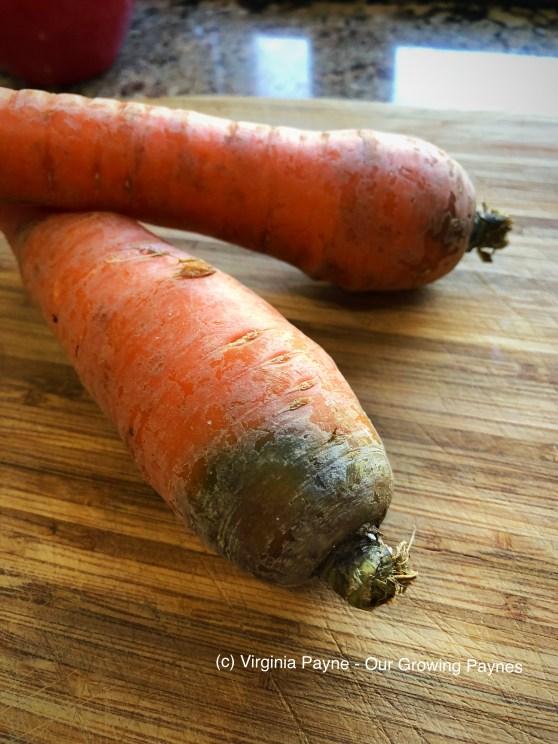 Carrot Cake Whoopie Pies 1 2018