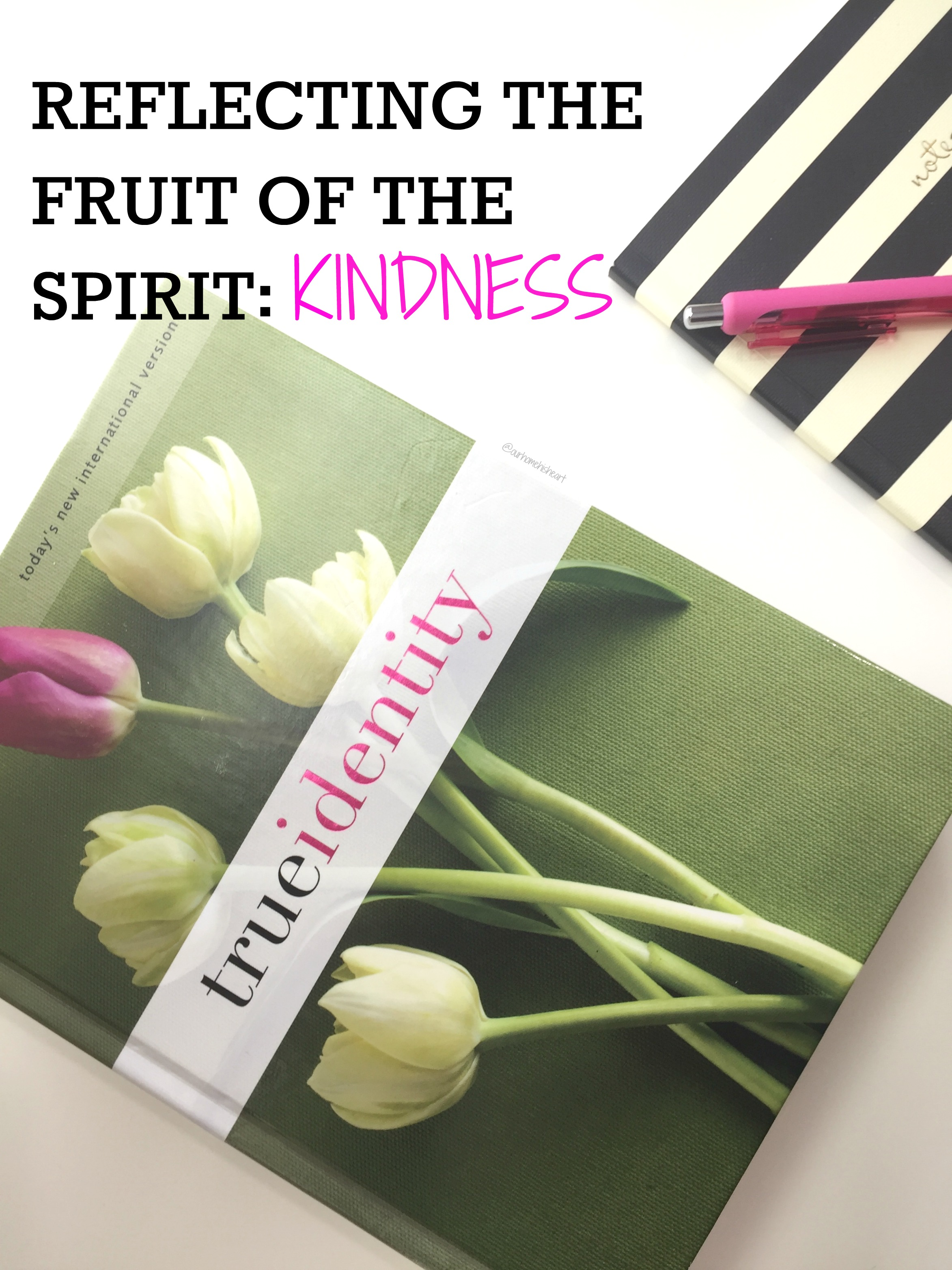 fruit of the spirit Kindness