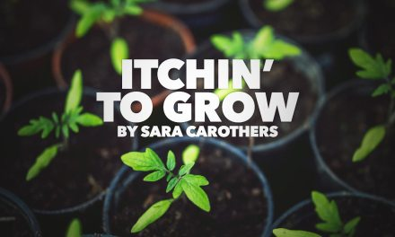 Itchin' to Grow…
