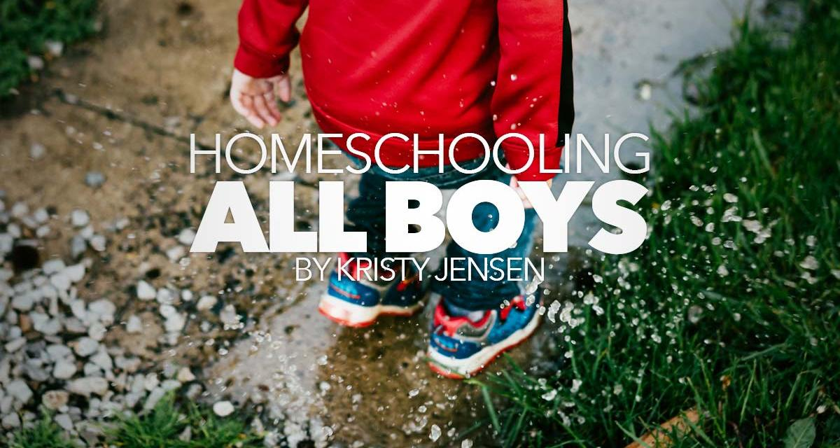 Homeschooling All Boys