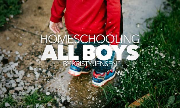 Homeschooling All Boys