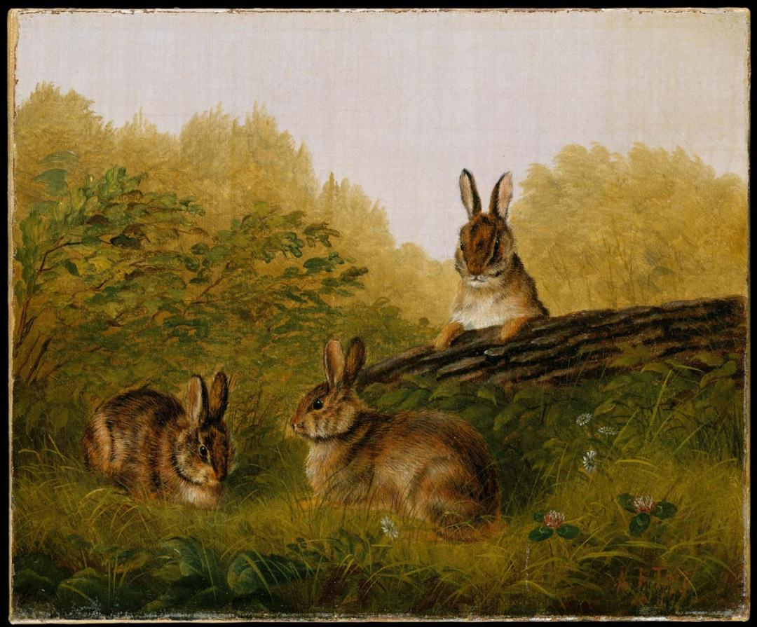 Tait - Rabbits on a Log