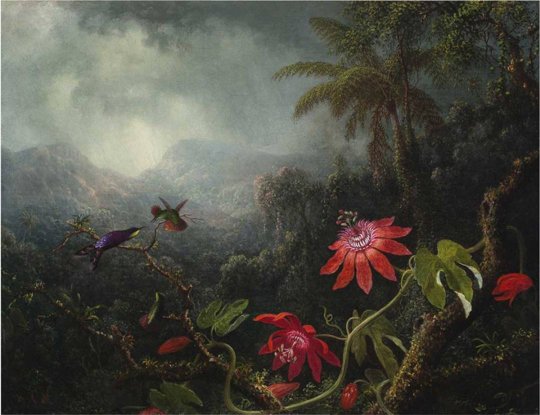 Heade - Passion Flowers with Three Hummingbirds