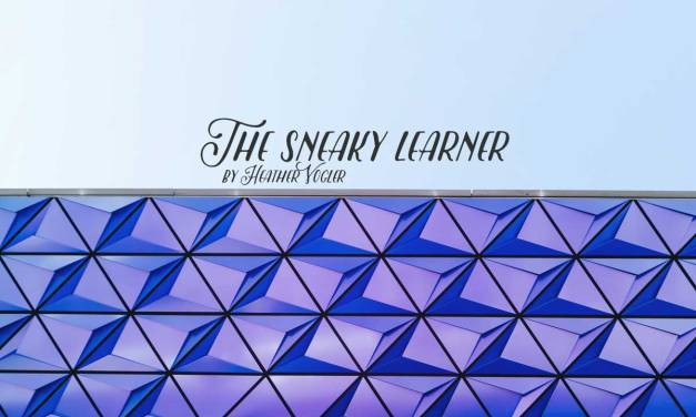 The sneaky learner