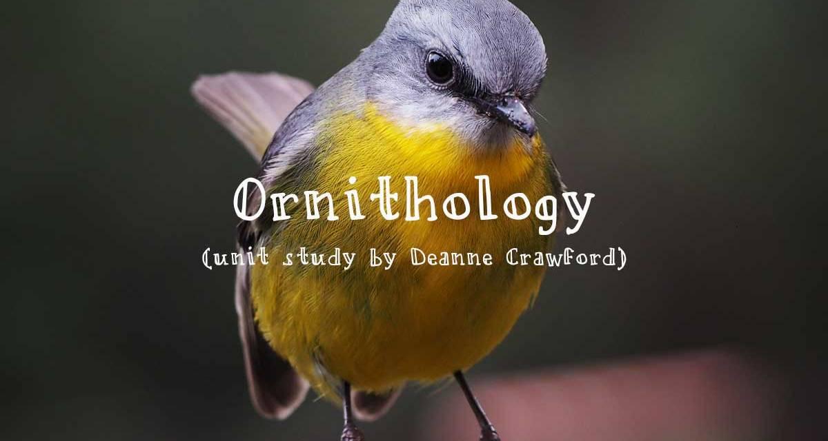 Unit study – ornithology