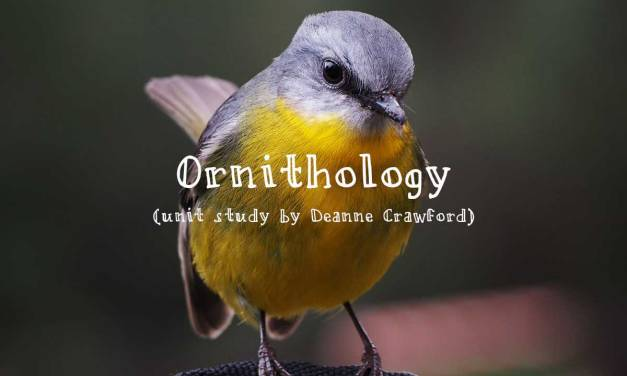 Unit study – ornithology