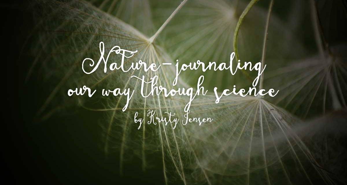 Nature journaling our way through science