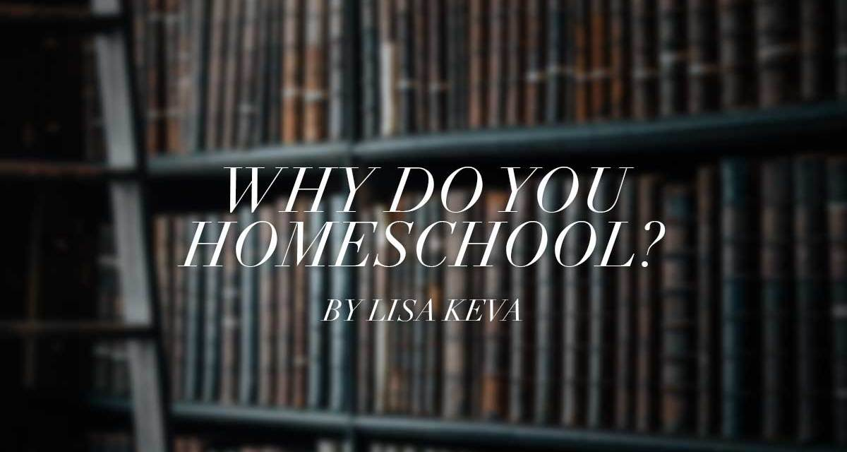 Why do you homeschool?