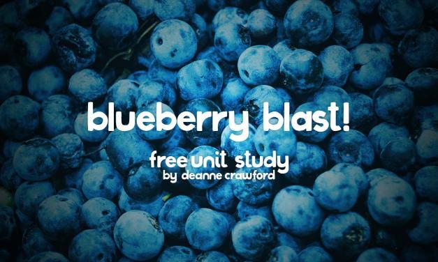 Blueberry Blast!
