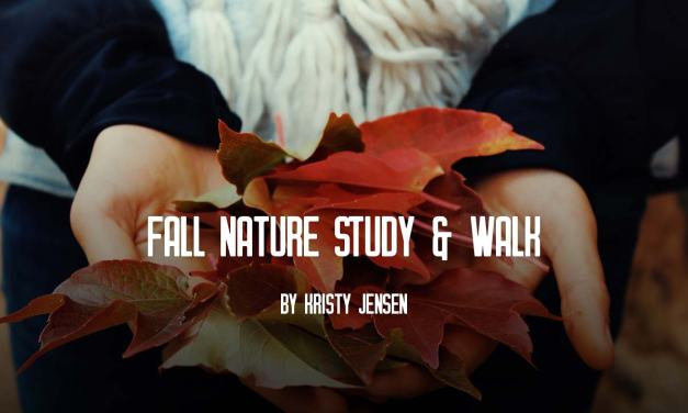 Fall nature study and walk