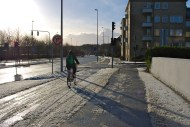 Danes always bike, even in the snow! She was not alone on the roads that day.