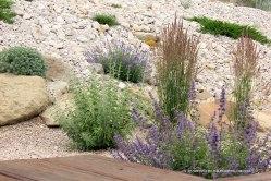 June-Garden-Update-Plants-off-Back-Deck-Corner