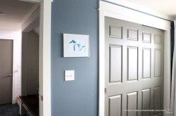 basement-bedroom-closet