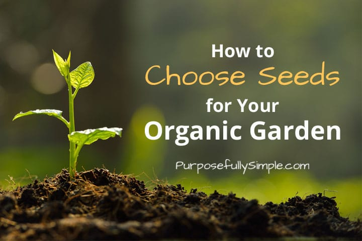 How to Buy Seeds for Your Organic Garden