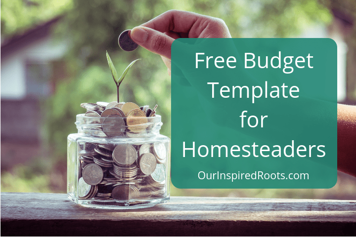 Free Monthly Budget Template for Homesteaders