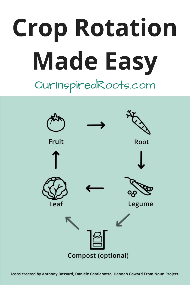 Crop rotation doesn't have to be a headache. With this simple rotation schedule you'll have fertile soil and beautiful vegetables every year with less work! #gardening #croprotation