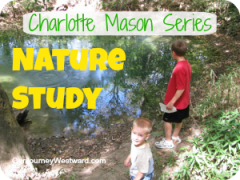 Charlotte Mason Style Nature Study | Our Journey Westward