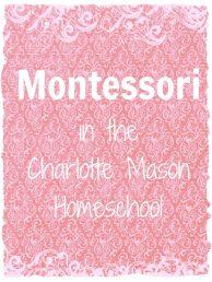 Montessori CM HS