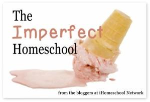 Imperfect Homeschooling