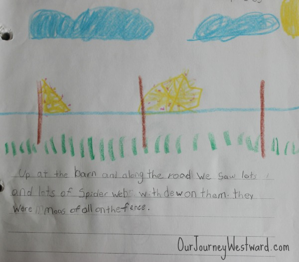 Nature journaling is an important part of nature study!