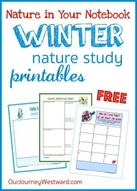 These free nature in your notebook printables will help keep the winter doldrums far away from your homeschool this season!