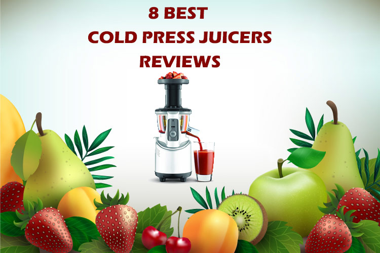 Looking For The Best Cold Press Juicers? Check At These Masticating Juicers