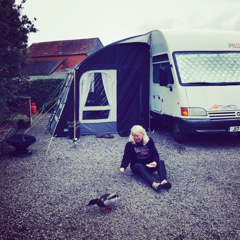 Fixed Kampa Motor Rally Pro - wife and ducks not included