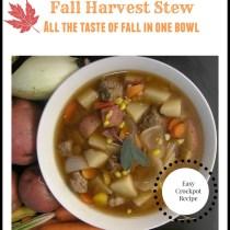 Fall Harvest Stew