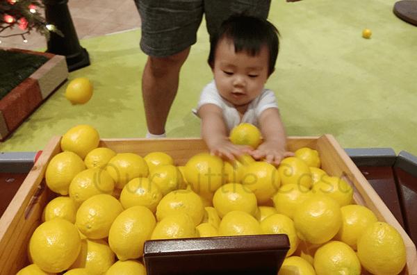 Fanpekka Grocer Lemons