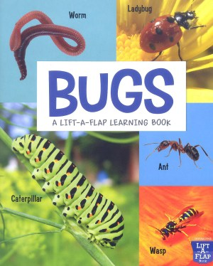 BUGS - A Lift-A-Flap Learning Book (Kid's Educational Books)