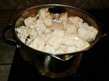 cauliflower-in-pot