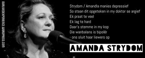 """Uit die liedjie """"Strydom / Amandla"""""""