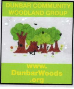 DCDW Sticker (2)