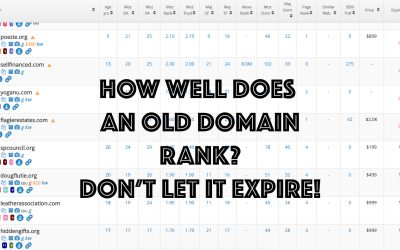Have you just let your domain expire?