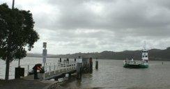 Car ferry at Rawene