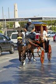 Taxi calèche Mdina, la Valette