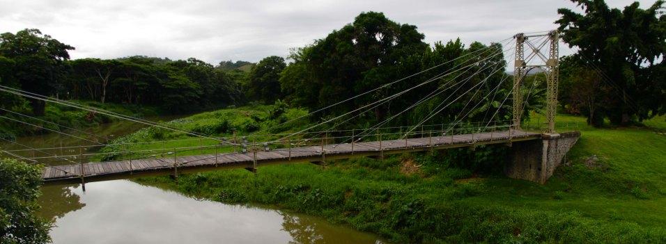La passerelle est un pont suspendu avec haubans traversant la rivière La Foa.
