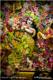 Sri Gopinath