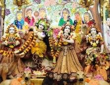 Sri Sri Radha Gopinath (10)