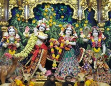 Sri Sri Radha Gopinath (11)