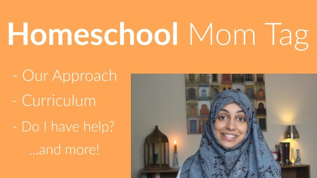 Homeschol mom tag on Youtube