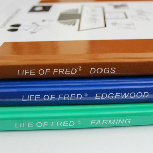 Life of Fred Maths Bundle Uk